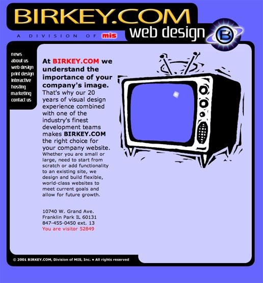 BIRKEY.COM in 2001